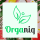 Organiq - Organic Food HTML Template - ThemeForest Item for Sale