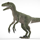 Velociraptor - 3DOcean Item for Sale