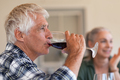 Senior man drinking red wine with friends - PhotoDune Item for Sale