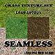 Seamless grass texture set - 3DOcean Item for Sale