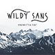 Wildy Sans - GraphicRiver Item for Sale
