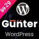Gunter - IT/Marketing Agency WordPress Theme