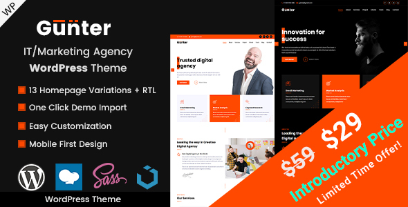 Gunter - IT/Marketing Agency WordPress Theme