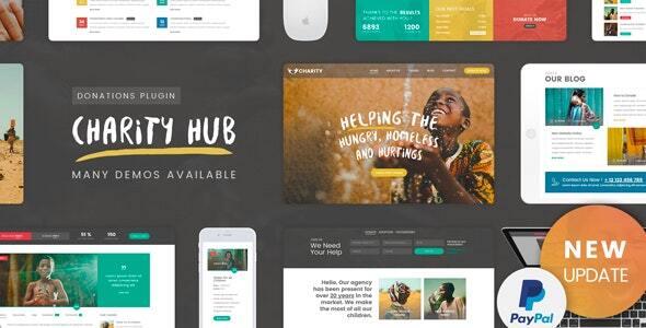 Charity Foundation - Charity Hub WP