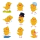 Set of Images of Little Chickens. Vector - GraphicRiver Item for Sale
