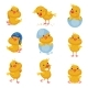 Set of Images of Cute Chickens in Different - GraphicRiver Item for Sale