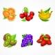 Fruit Set. Vector Illustration. - GraphicRiver Item for Sale