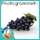 Blue Grapes - 3DOcean Item for Sale