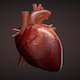 HeartBeat Sound Effect 2
