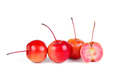 Crab apples isolated on white background - PhotoDune Item for Sale