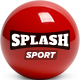 Splash - Sport Club WordPress Theme for Basketball, Football, Hockey - ThemeForest Item for Sale