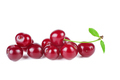 Wild cherries isolated on white background - PhotoDune Item for Sale