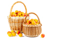 Fresh apricots in wicker baskets isolated on white background - PhotoDune Item for Sale