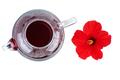Hibiscus tea and flower - PhotoDune Item for Sale