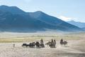 Tibetan nomads travelling with hourses and yaks. Ladakh highland - PhotoDune Item for Sale