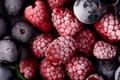 Frozen Berries - PhotoDune Item for Sale