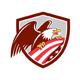 American Bald Eagle Clutching USA Flag Shield Retro - GraphicRiver Item for Sale