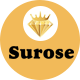 Surose - Jewelry eCommerce HTML Template - ThemeForest Item for Sale