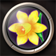 Flowers Icons - GraphicRiver Item for Sale