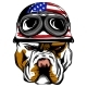 Vector Face of Bulldog Biker with Helmet - GraphicRiver Item for Sale