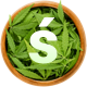 Sativaka - Medical Marijuana Dispensary WordPress - ThemeForest Item for Sale