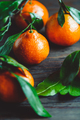 Tasty clementines on a table. Macro food photography. - PhotoDune Item for Sale