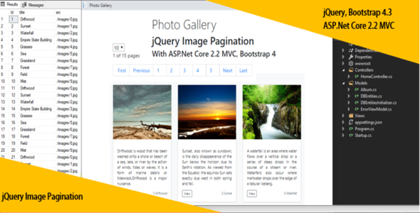 jQuery Image Pagination With ASP.Net Core 2.2 MVC, Bootstrap 4 and SQL Database Download