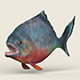 Low poly Realistic Piranha - 3DOcean Item for Sale