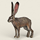 Low poly Realistic Rabbit - 3DOcean Item for Sale