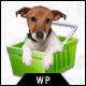 Petshop: A Creative WooCommerce theme - ThemeForest Item for Sale