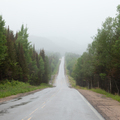 Foggy Trans-Labrador Highway TLH Quebec Canada - PhotoDune Item for Sale