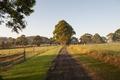 Farm Walking Track - PhotoDune Item for Sale