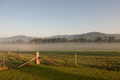 Farmland Fog - PhotoDune Item for Sale