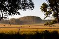 Australian Farm Land - PhotoDune Item for Sale