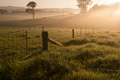 Farm gate on a foggy morning - PhotoDune Item for Sale