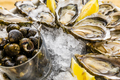 Fresh oysters with lemon, bread and butter - PhotoDune Item for Sale