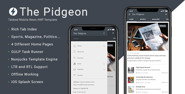ThePidgeon - Tabbed Mobile News AMP Template