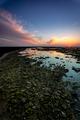 Beach of the Corrales,  fish pens, of Rota, Cadiz, Spain - PhotoDune Item for Sale