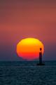 Sunset on the beach of Sanlucar de Barrameda - PhotoDune Item for Sale