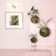 "Plant ""Kokedama"" - 3DOcean Item for Sale"