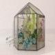 Floriana Plant - 3DOcean Item for Sale