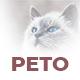 Peto - Google Slides Presentation - GraphicRiver Item for Sale