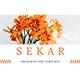 Sekar - Google Slides Presentation - GraphicRiver Item for Sale