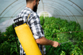 Young farmer protecting his plants with chemicals - PhotoDune Item for Sale