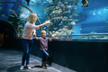 Mother and son watching sea life in oceanarium - PhotoDune Item for Sale