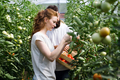 Young happy couple farming vegetables in greenhouse - PhotoDune Item for Sale