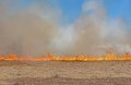 Fire Marching across a Prairie - PhotoDune Item for Sale