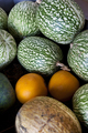 Melons and watermelons - PhotoDune Item for Sale