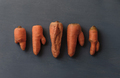Ugly carrots with unusual shapes - PhotoDune Item for Sale