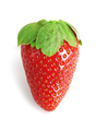 Single Fresh Strawberry - PhotoDune Item for Sale
